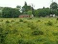 A Meadow - geograph.org.uk - 455795.jpg