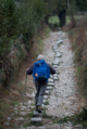 A pilgrim walks the Camino de Santiago .png
