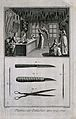 A shop selling plumage, above; tools for making and applying Wellcome V0019618EL.jpg