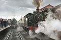 A steamy affair (2914966144).jpg