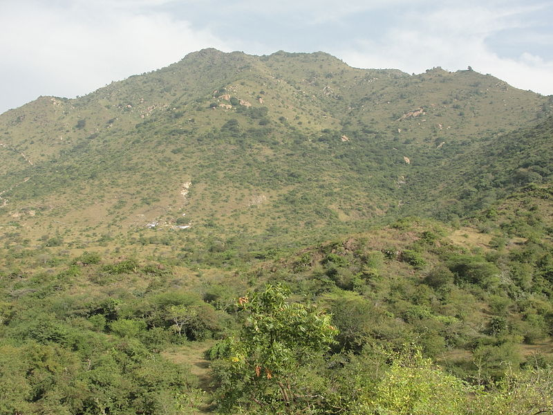 படிமம்:A view of Kanjamalai.JPG