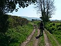 A walk in the country - geograph.org.uk - 1260066.jpg