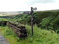 Above the Portals of Woodhead Tunnels - geograph.org.uk - 490102.jpg