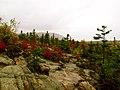Acadia National Park (8111142102).jpg