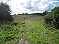 Ackerland bei Klein Siemz - geo.hlipp.de - 14160.jpg