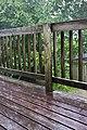 Afternoon Rain (4759238572).jpg