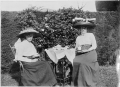 Afternoon tea in the garden ATLIB 337856.png