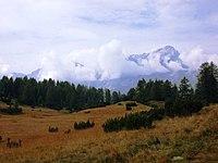 Ai piedi del Monte Pelmo - panoramio.jpg