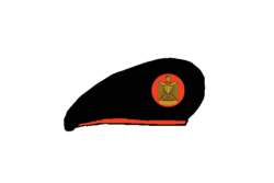 Air defense brigadier Beret - Egyptian Army.png