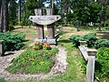 Algimanto Zavišos kapas.JPG