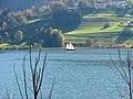 Alpsee - panoramio (6).jpg