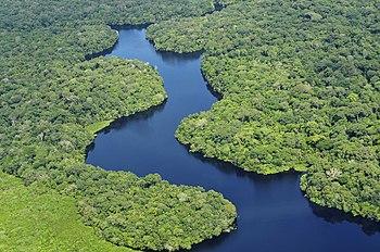 Fotos del rio amazonas en ecuador