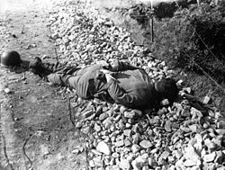 A soldier's body laying on the ground with his hands tied behind his back