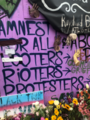 Amnesty for all looters (50037851816).png