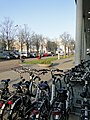 Amsterdam 11.04.2012 - panoramio (19).jpg