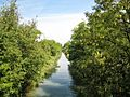 Ancien Canal du Rhône au Rhin near Fesssenheim, Alsace, France - panoramio (3).jpg