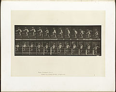 Animal locomotion. Plate 473 (Boston Public Library).jpg
