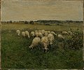 Anton Mauve - Sheep Grazing in an Open Field - 17.3238 - Museum of Fine Arts.jpg