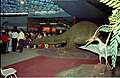 Apatosaurus And Pteranodon - Dinosaurs Alive Exhibition - Science City - Calcutta 1995 June-July 101.JPG