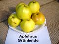 Apfel aus Grunheide.png
