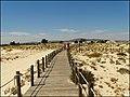Armona Island (Portugal) (50524129003).jpg