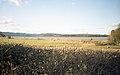Around Arnside, Cumbria (360040) (9452843333).jpg