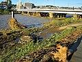 Asakawa bridge after the Typhoon Hagibis 2019 03.jpg
