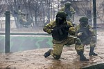 AssaultTraining2015-07.jpg
