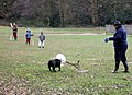 At play on Hampstead Heath - geograph.org.uk - 1803259.jpg