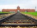 Auschwitz-birkenau-main track.jpg