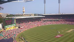 2013–14 Ashes series - Celebrations at the SCG after Australia won the Ashes 5–0