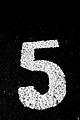 BAM! five (3448327797).jpg
