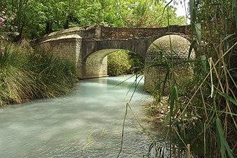 Baños Romano.JPG