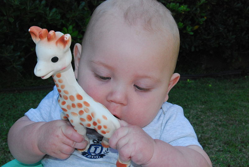 File:Baby playing with Sophie.jpg