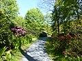 Bad Sassendorf – Kurpark - Rhododendronpark am 6. Mai 2016 - panoramio.jpg