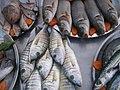 Balıkesir balıklar (5438550484).jpg