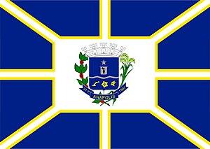 Anápolis - Image: Bandeira Anapolis