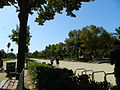 Barcelona 4446.JPG