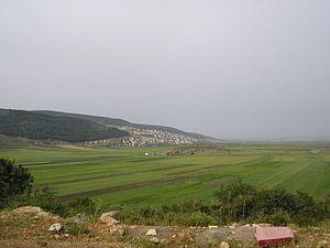 Bu'eine Nujeidat - Beine, 2005