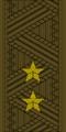 Belarus Armed Forces—02 Lieutenant General rank insignia (Khaki)—MIA.png
