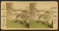 Belle Isle, river-environed park, Detroit, Michigan, from Robert N. Dennis collection of stereoscopic views.png