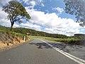 Benandarah NSW 2536, Australia - panoramio (27).jpg