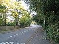 Bend in Brockhampton Road - geograph.org.uk - 1001493.jpg