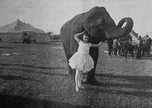 Bessie Love and an elephant in The Sawdust Ring.jpg