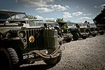 Beuzeville Au Plain C47 Crash Site Memorial for 101st Air Assault 150603-A-DI144-183.jpg