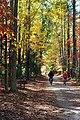 Biking Backbone Trail (5182585280).jpg