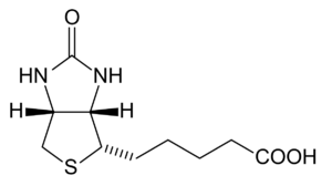 B vitamins - Image: Biotin structure JA