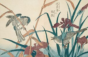 Kitao Shigemasa - Birds and Iris