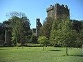 Blarney - panoramio - cisko66 (1).jpg
