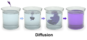 Diffusion - Three dimensional rendering of diffusion of purple dye in water.